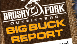 Ohio big buck deer hunting report